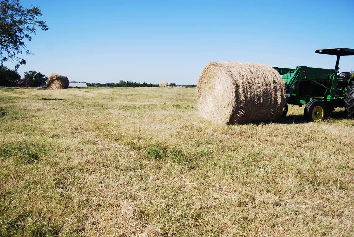 Admirals_Tractor_and_thew_round_bales