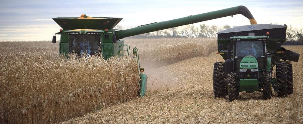 102213.n.gfh.corn-harvest