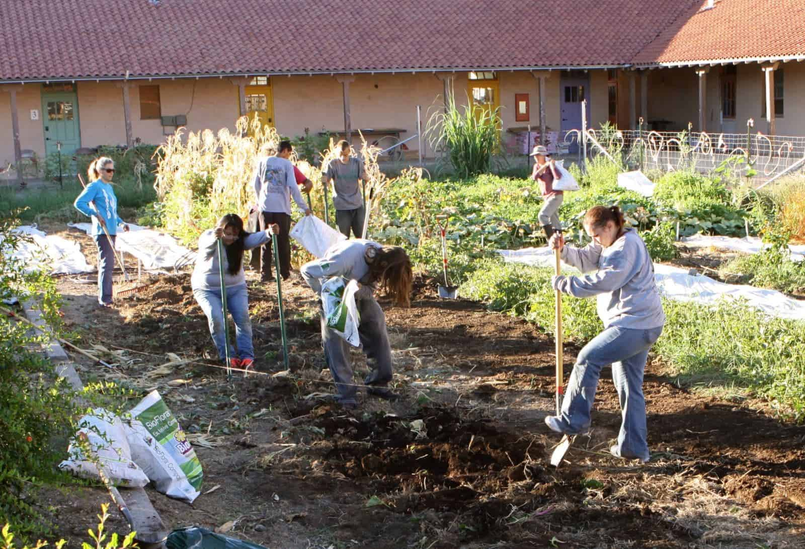 """Participants of the """"Get Going, Get Growing"""" gardening internship in Ajo, Arizona, work up dirt for a garden."""