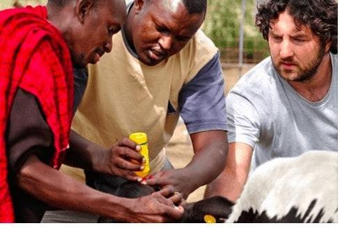 Shiloh and Maasai