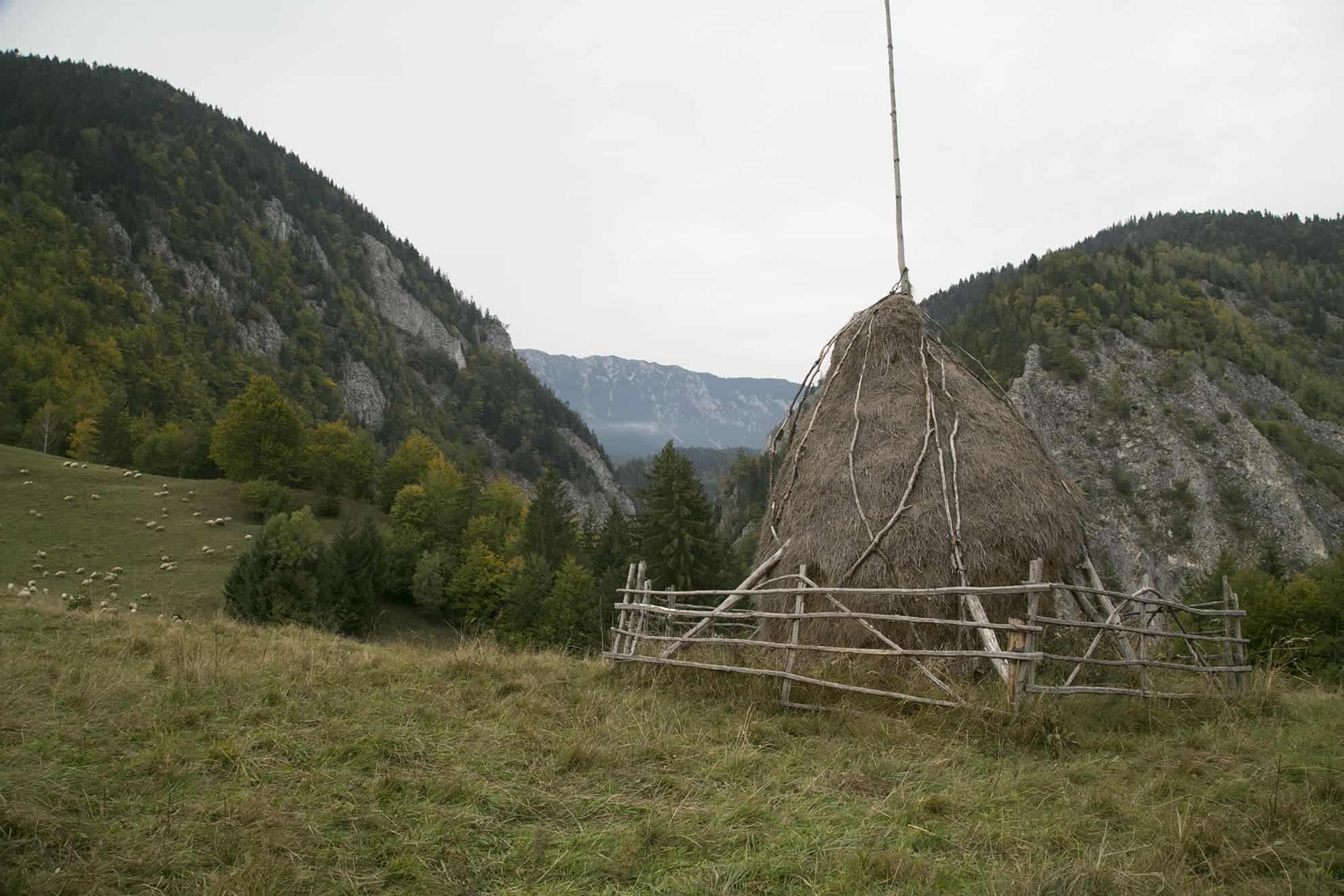 A haystack on the Carpathian mountainside. All photos by Tom Hansell.