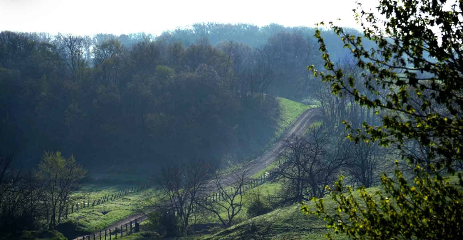 The rolling Illinois countryside along the McDonough-Fulton County line glows on a mid-April Saturday morning. The road heads into Fulton County, which is in the Spoon River Valley.