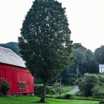 Barn and home near Ashfield, Massachusetts. Photo by Shawn Poynter/Daily Yonder