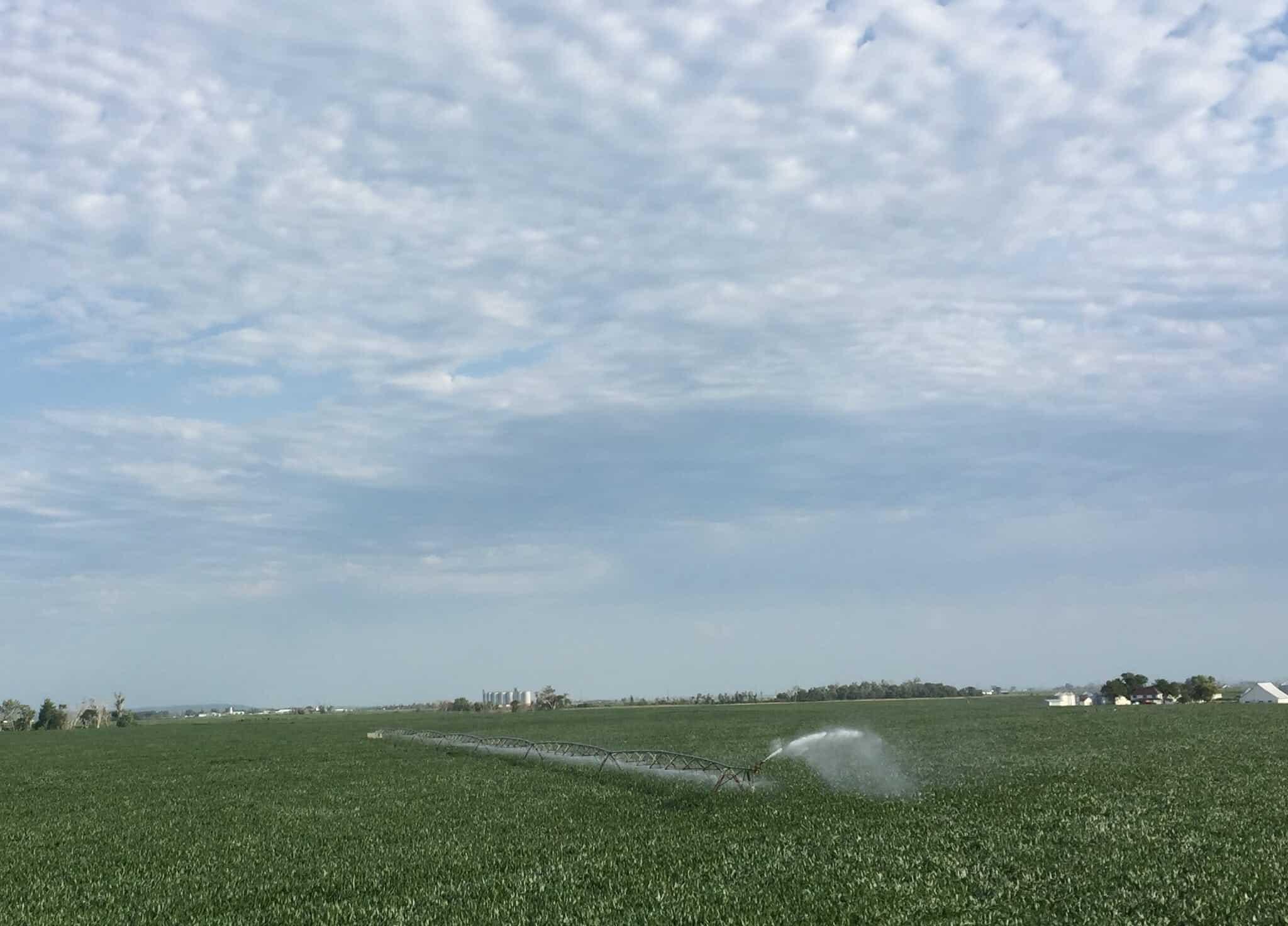 oswald_irrigation