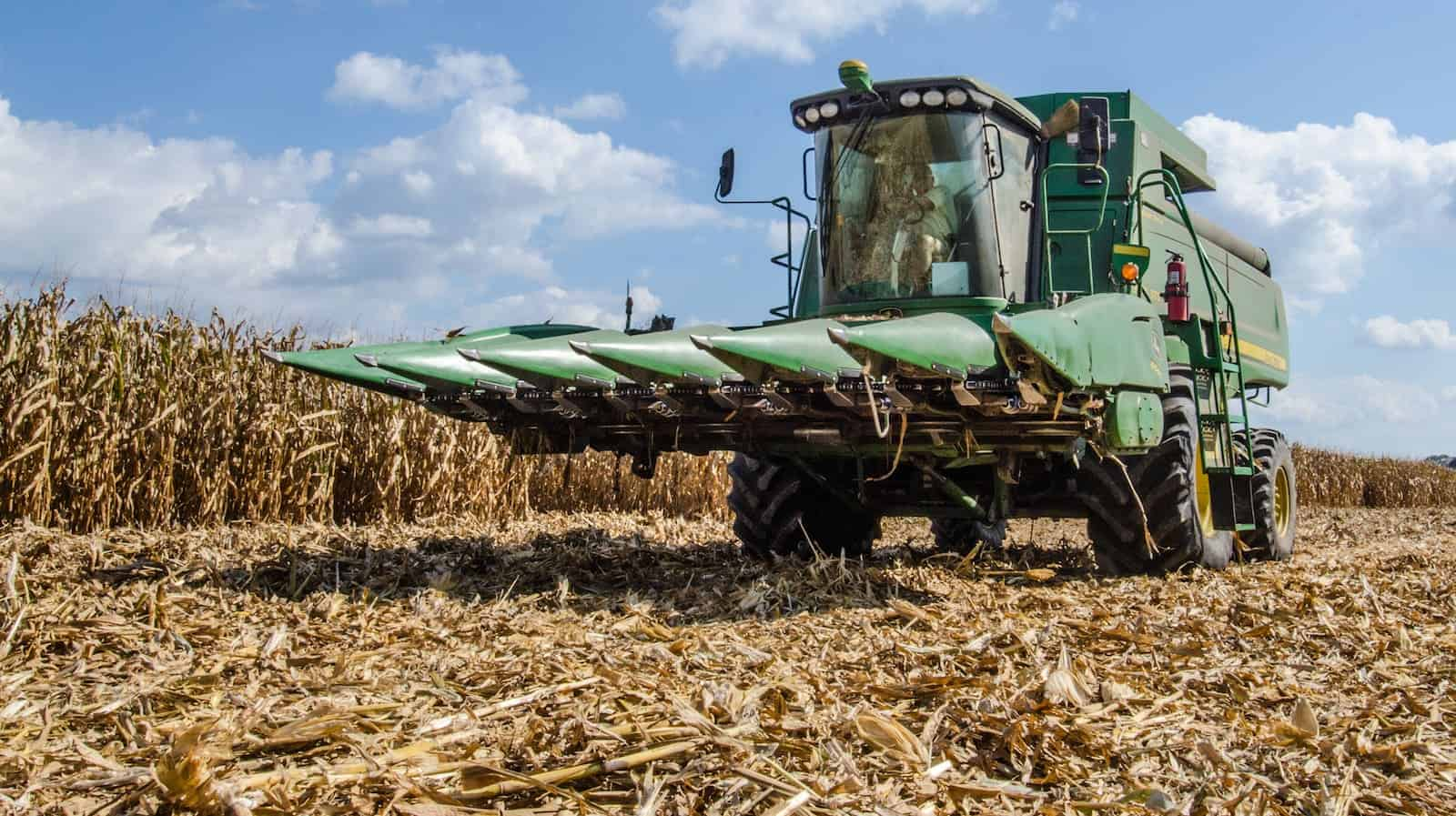 A farmer drives one of the farm's smaller combines from one field to another during the feed corn harvest at the John N. Mills & Sons farm in Hanover and King William Counties in Virginia. Photo by Lance Cheung/USDA