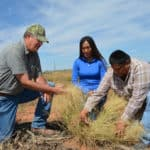 A Natural Resource Conservation Service employee (left) based in a Utah Service Center helps assess native grasses with workers at a range-land restoration project. The budget proposal calls for staff cuts at USDA Service Centers around the country. (USDA via flckr)