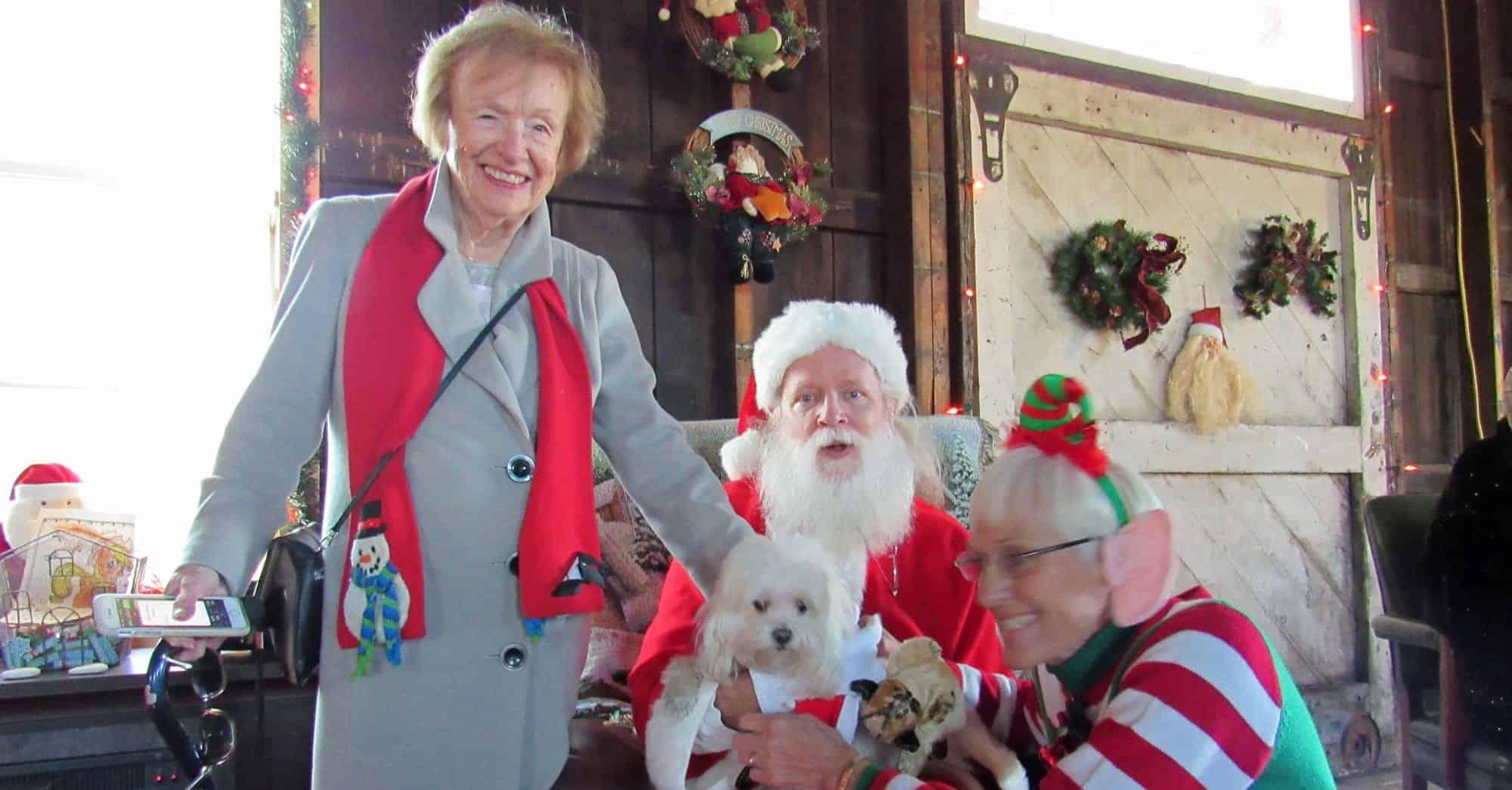 Eileen Rauschert Tiger Santa Debbie Klinedinst IMG_1144web