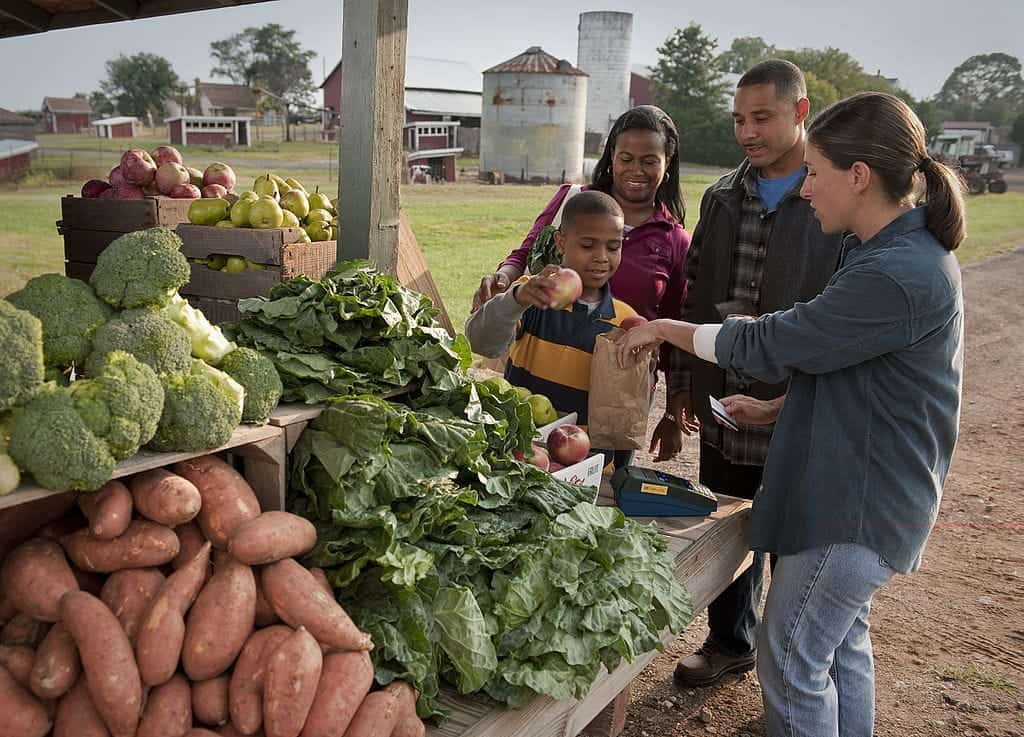 1024px-USDA_is_working_hard_to_expand_access_to_farmers'_markets_for_those_participating_in_the_Supplemental_Nutrition_Assistance_Program_(SNAP)