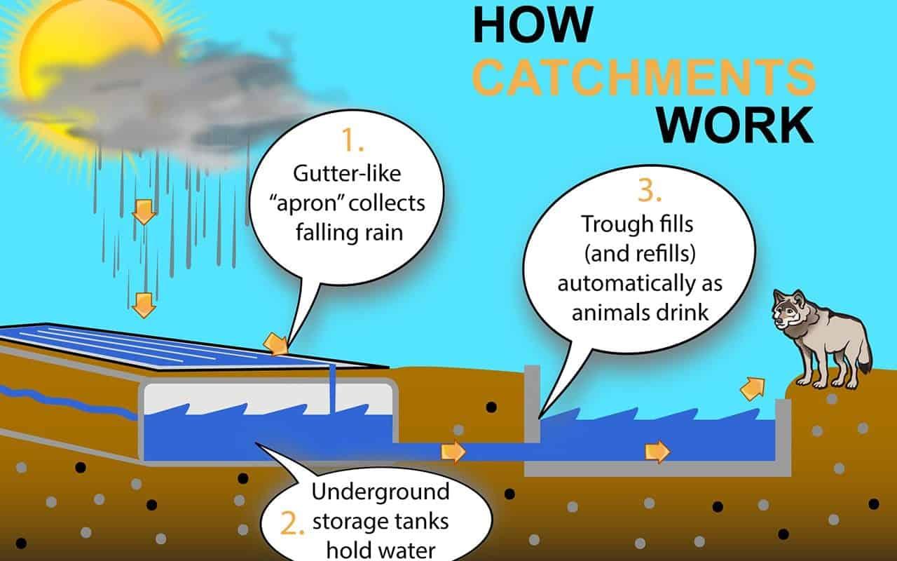 Catchment-Infographic-V1-1280