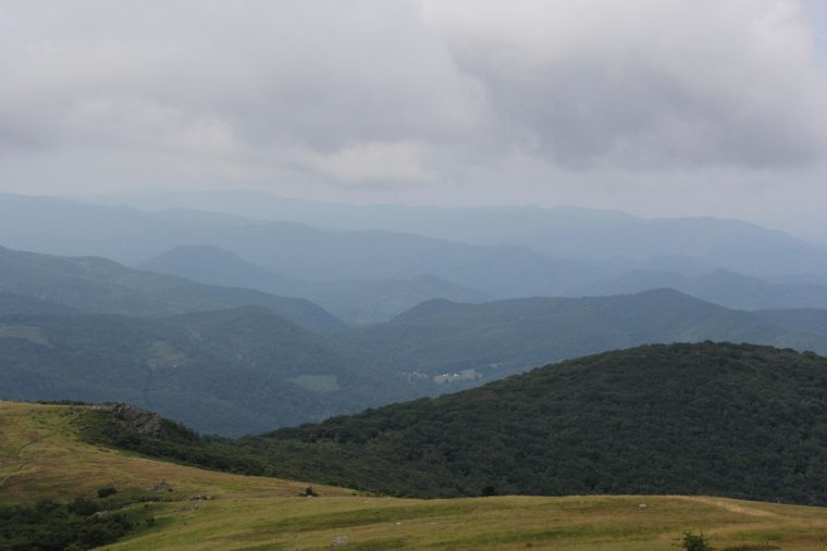 Whitetop Mountain