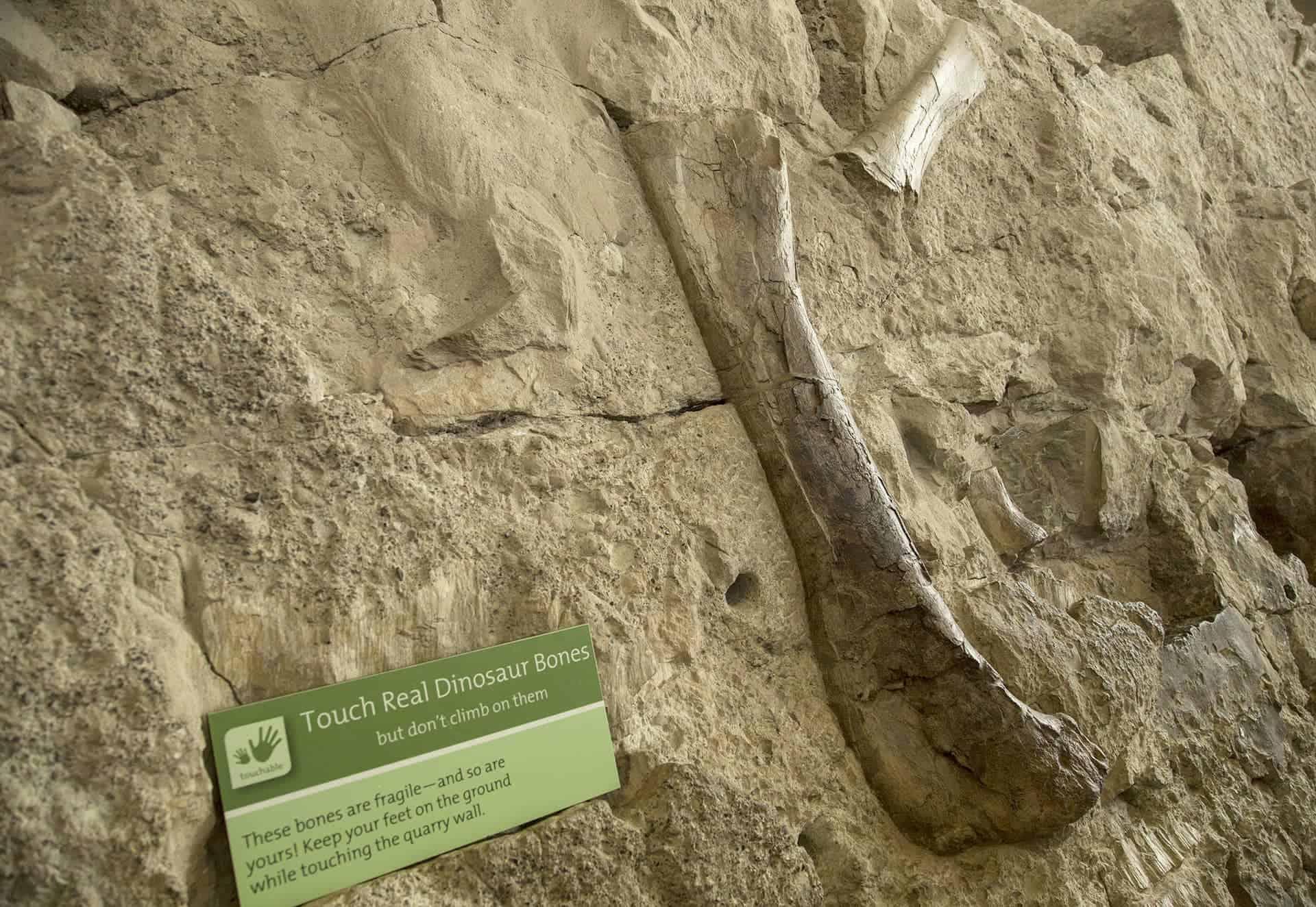 National Dinosaur Monument. (Photo by Kyle Greenburg)