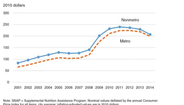 The Impacts of Supplemental Nutrition Assistance Program Redempt