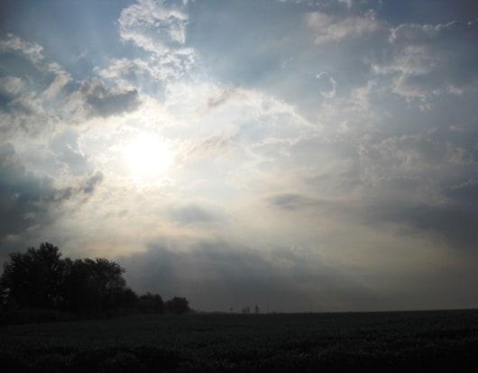 Bushnell-Sunrise530.jpg