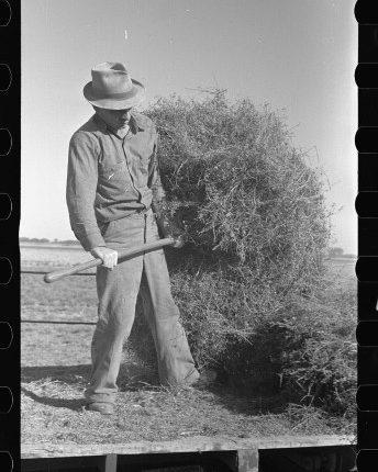 Jack-Gardinier-who-has-bought-a-farm-under-the-tenant-purchase-program.-Ottawa-County-Kansas.jpg