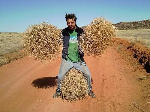 Tumbleweed-man500.jpg