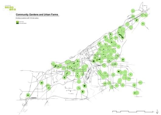 community-gardens-and-urban-farms530.jpg