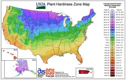 plant-hardiness-530.jpg