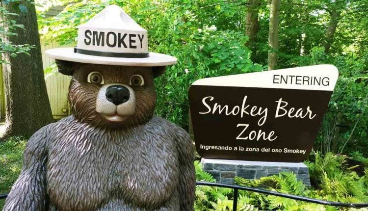 SmokeyBearNationalZoo