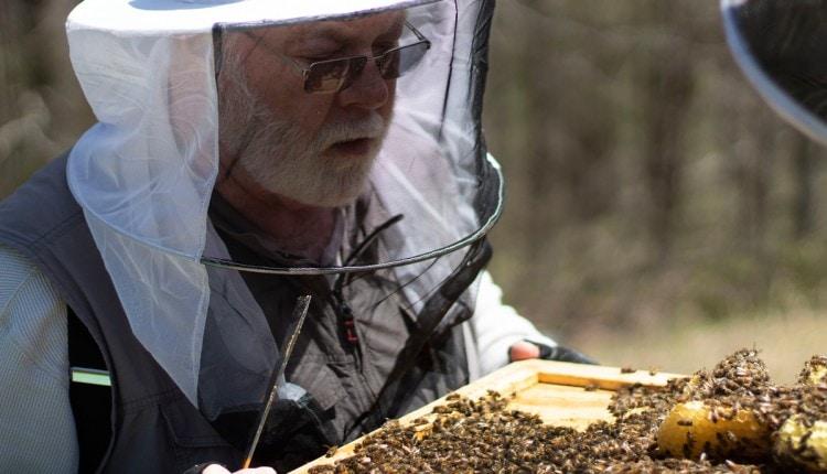 190912-west-virginia-appalachian-beekeepers-coal-mining-jobs-training-0-top