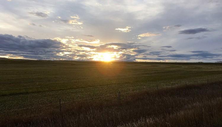 montana-farmland