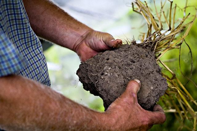 soil health pores doug peterson usda