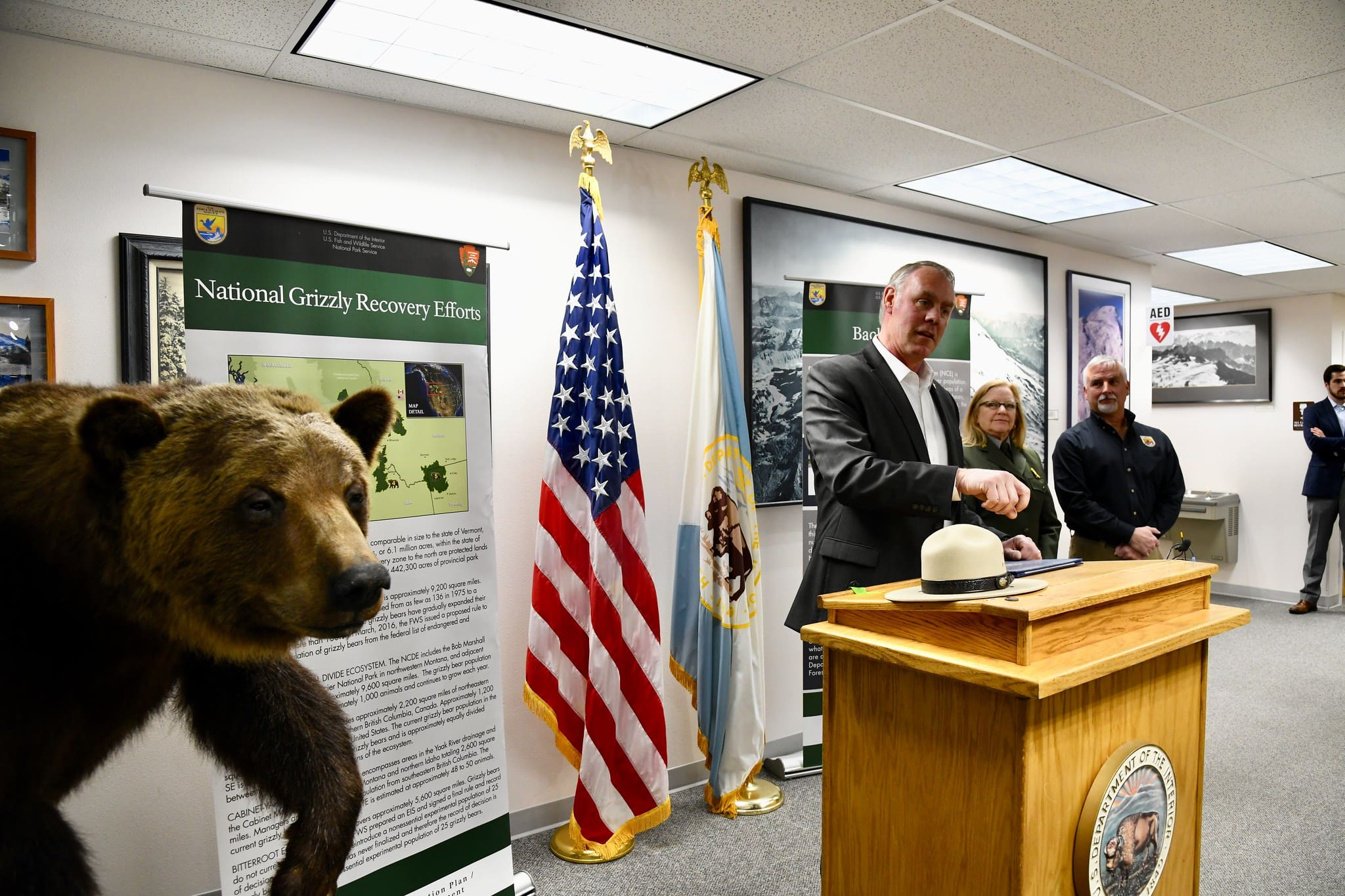 zinke grizzly bear reintroduction announcement
